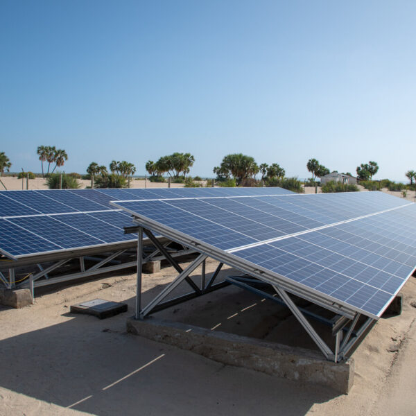 Invest in the Sun Podcast: Candid conversations about the off-grid solar market